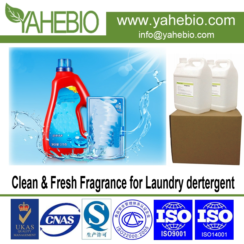 Clean & Fresh fragrance for laundry detergent