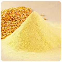 grilled corn seasoning powder with strong sweet corn aroma